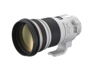 【機材評価】競馬写真向けおすすめ望遠単焦点レンズ(サンニッパ、ヨンニッパ)