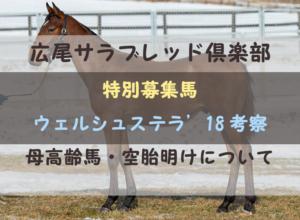 【一口馬主】ウェルシュステラ'18 募集馬評価|母高齢馬と空胎明け考察