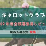 【一口馬主】2019年度 キャロットクラブ 関西牝馬 募集馬評価・レビュー