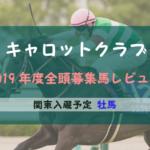 【一口馬主】2019年度 キャロットクラブ 関東牡馬 募集馬評価・レビュー