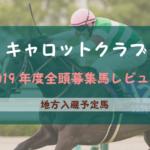 【一口馬主】2019年度 キャロットクラブ 地方入厩馬 募集馬評価・レビュー