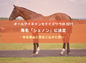 【ワラウカド】馬名「シェノン」に込めた想い | オールアイキャンセイイズワウの2017