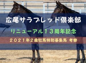 【一口馬主】2021年2歳牡馬 広尾TC13周年記念特別募集馬  評価・レビュー