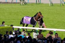 2010天皇賞春-10