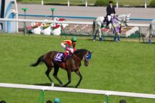 2010天皇賞春-02
