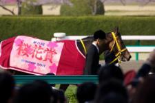 2011桜花賞-4