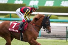 2011神戸新聞杯-2