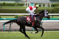 2011神戸新聞杯-3