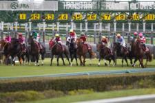 2011神戸新聞杯-5