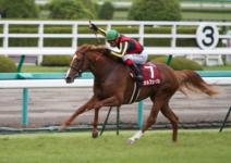 2011神戸新聞杯-7