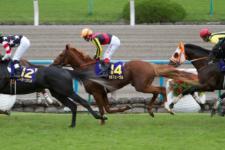 2011菊花賞-03