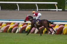 2011菊花賞-04