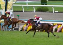 2011菊花賞-08