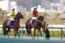 2011阪神JF