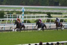 2012天皇賞-01