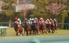 2012桜花賞-2