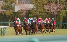 2012桜花賞-3