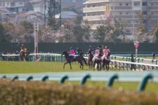 2012桜花賞