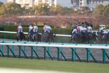 2013ジャパンカップダート-11