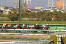 2013ジャパンカップダート-12