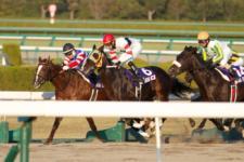 2013ジャパンカップダート-14