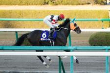 2013ジャパンカップダート-04