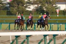 2013ジャパンカップダート-05