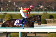 2013ジャパンカップダート-06