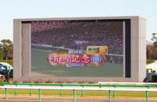 2013有馬記念-001