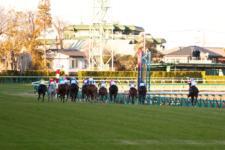 2013有馬記念-019