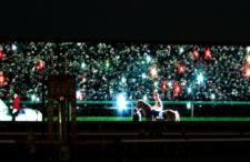 2013有馬記念-021