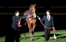 2013有馬記念-022