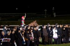 2013有馬記念-023
