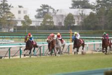 2013阪神大賞典-2