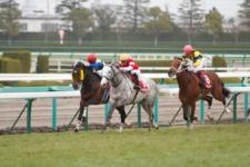 2013阪神大賞典-3