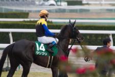 2014京都牝馬S-2