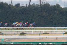 2014京都牝馬S-3