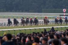 2014京都牝馬S-4