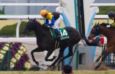 2014京都牝馬S-6