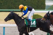 2014京都牝馬S-7