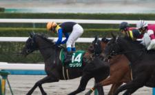 2014京都牝馬S-8