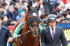 2014京都金杯-1