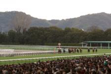 2014京都金杯-4