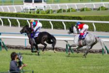 2014天皇賞-05