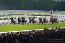 2014天皇賞-06