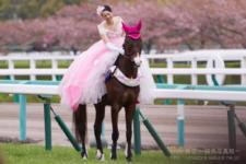 2014桜花賞-1