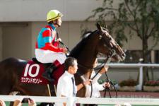 2014神戸新聞杯-01