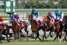 2014神戸新聞杯-11