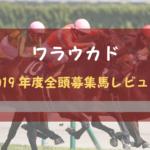 【一口馬主】2019年度 ワラウカド 全頭評価・募集馬レビュー