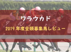 【一口馬主】2019年度 ワラウカド 全頭評価・募集馬レビュー【更新中】